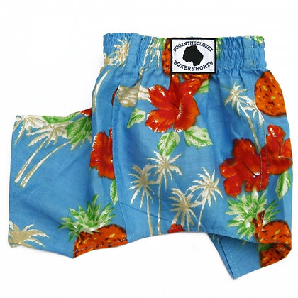 Lahaina Dog Belly Boxers