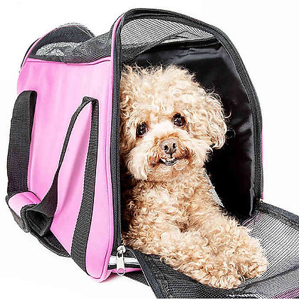 Airline Approved Sporty Dog Carrier
