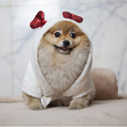 Lady Bug Dog Bathrobe