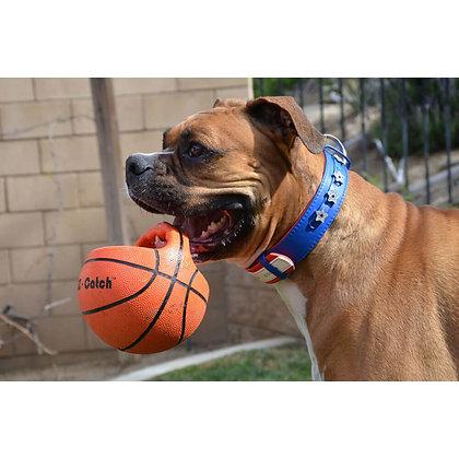 SPOT EZ-Catch Dog Basketball Toy