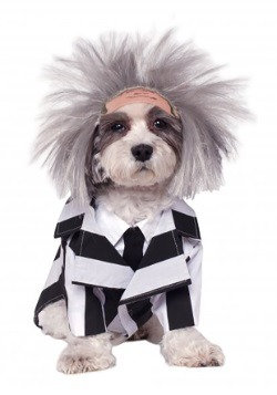 Beetlejuice Dog Halloween Dog Costume