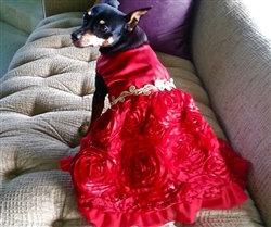 Scarlett O'Hara Red Satin Dog Party Dress