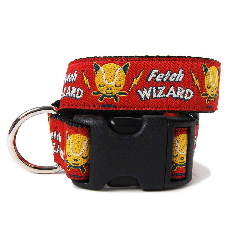 Fetch Wizard Collar