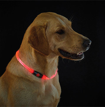 LED Rechargeable Dog Safety Collar