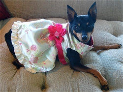 Ivory and Fuschia Satin Dog Party Dress