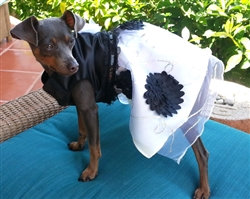 Black and White Satin Dog Dress and 3D Flowered Netting