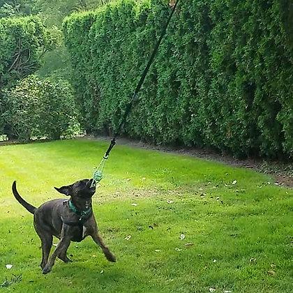 Tumbo Ball and Bungee Hanging Dog Toy