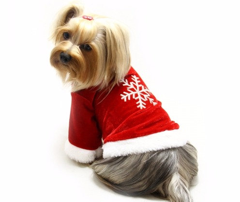 Christmas Velour Holiday Dog Shirt