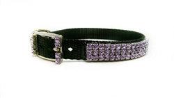 Purple Elegance Dog Collar