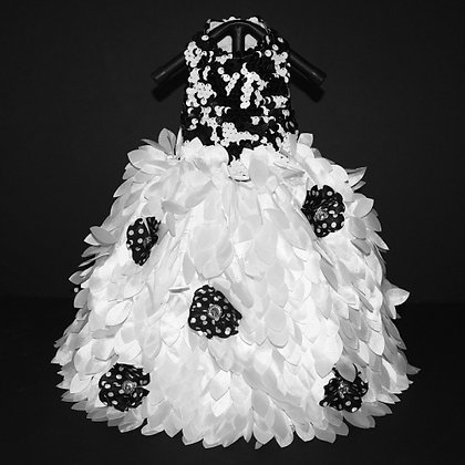 Drama Queen Black And White Dog Gown