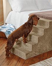 Lightweight Foam Dog Steps
