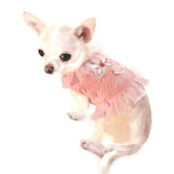Pink Butterfly Angel Dog Harness