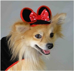 Minnie Mouse Dog Hat Red