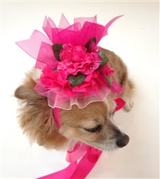 The Azaleas are in Bloom Dog Hat Pink