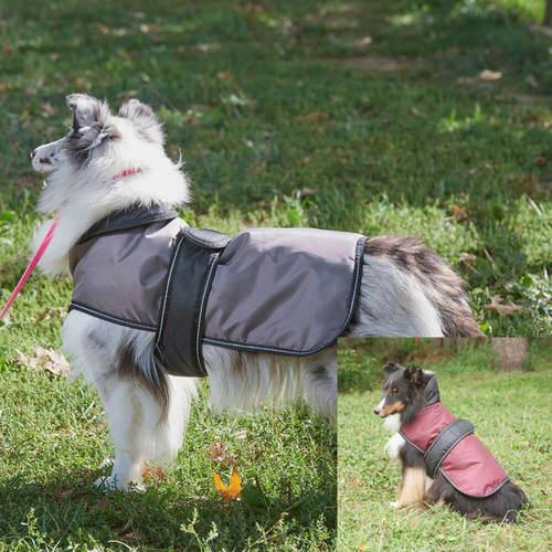 Arctic Dog Coat
