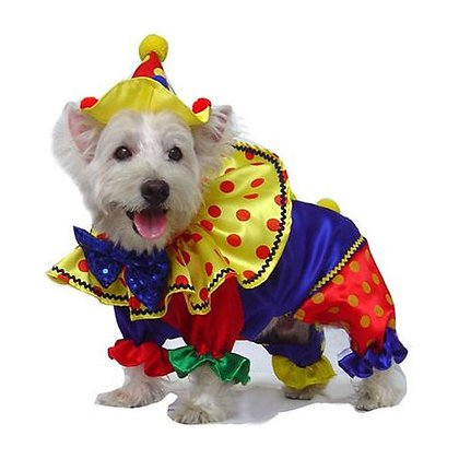 Shiny Clown Dog Costume