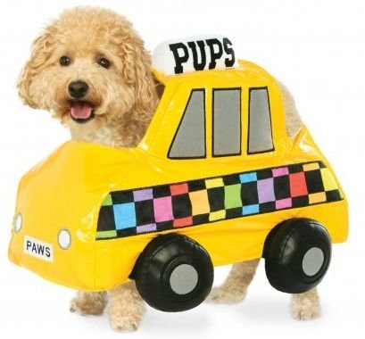 NYC Taxi Cab Dog Costume