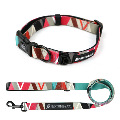 Geomuttric Dog Collar and Leash Set