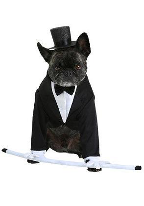 Formal Tuxedo Dog Costume
