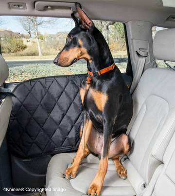 Car Dog Door Cover