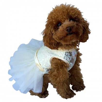 Fufu Tutu Lace Dog Dress Ivory