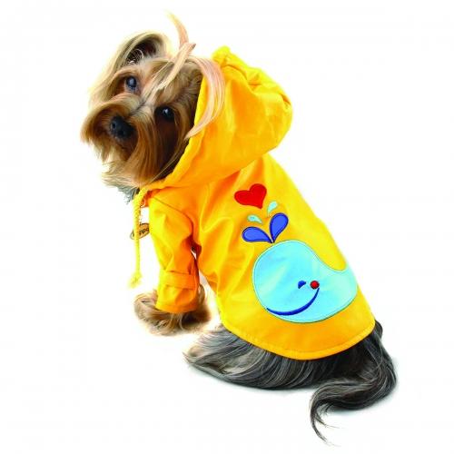 Whale Raincoat
