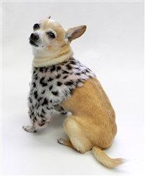 Park Avenue Dog Shrug Pink Leopard