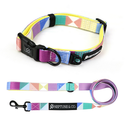 Pastel Pooch Dog Collar and Leash Set