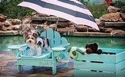 Luxury Outdoor Cedar Hampton Pet Chair