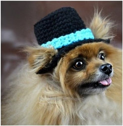 Crochet Dog Top Hat Beanie