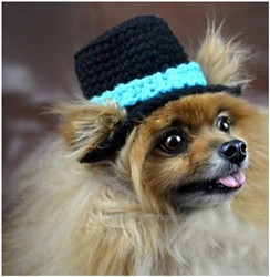 Crochet Dog Top Hat Beanie