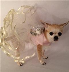 Little Blushing Bride Dog Dress