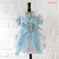 Fairy Dust Dog Dress Blue