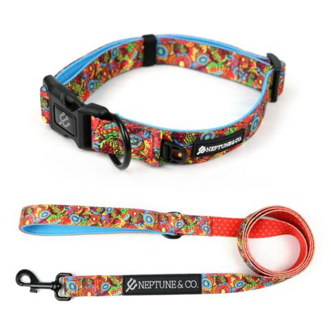 Pup Art Collar/Leash