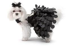 Yvette Ruta Crystal Butterfly Dog Dress Black