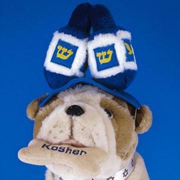 Dreidel Dog Hat