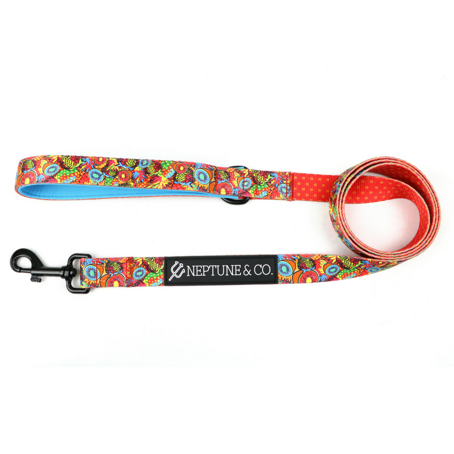 Pup Art Dog Leash