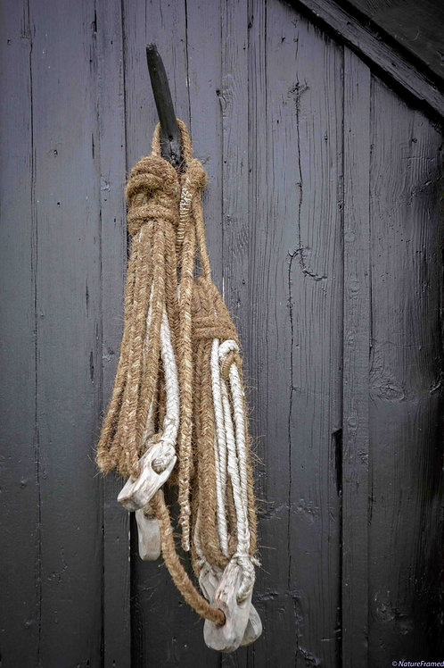 'Old Rope'