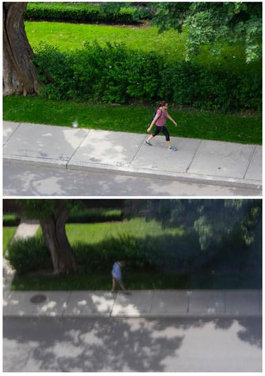 WalkingDyptich.jpg