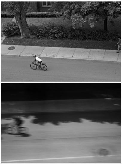 BikerDyptich.jpg