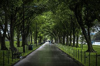 A Walk.jpg