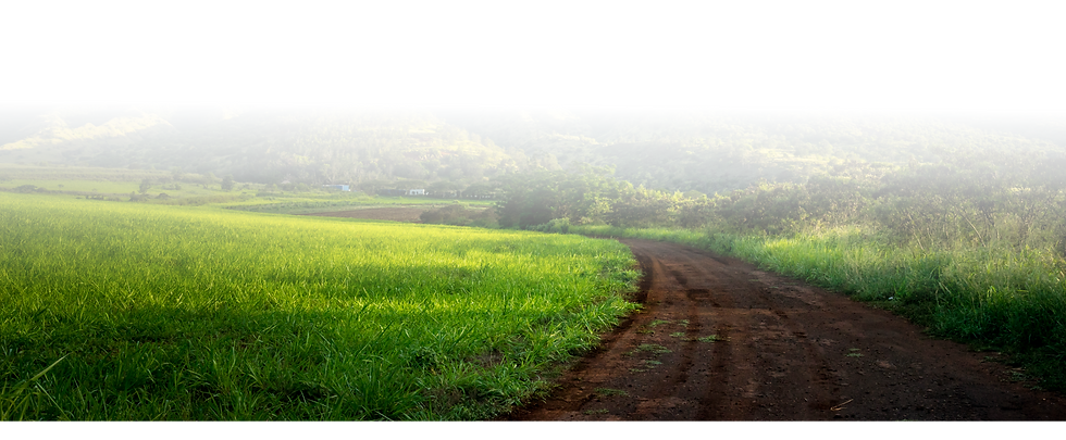Footer-Image_Dirt-road-east-side@2x.png