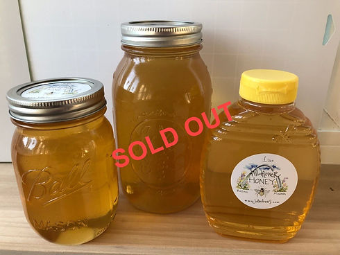 Honey options_sold out.jpg