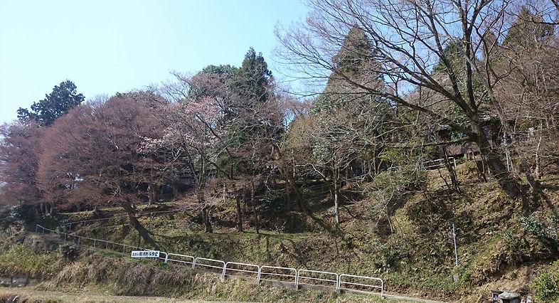 yoichido3.jpg