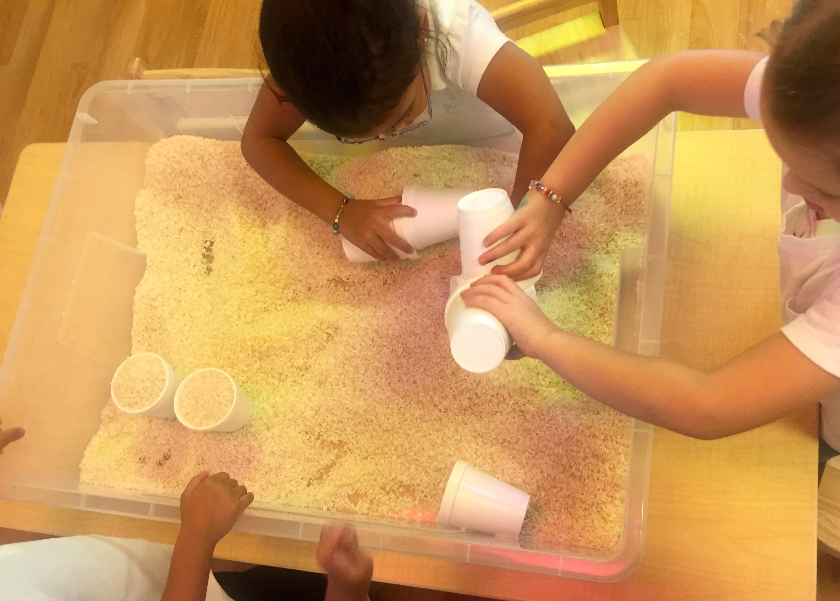 Bilingual Summer Camp Sensory Week