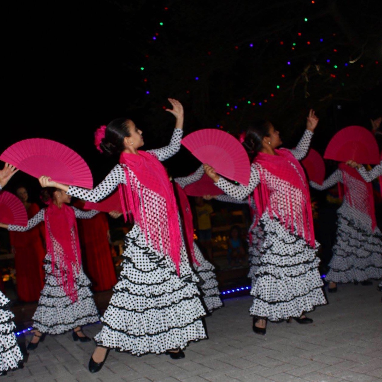 Flamenco Show December