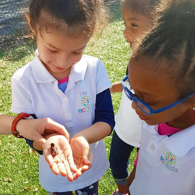 I AM EcoKids 🍃🐞 • #discover #wonder #learn #world #nature #ecokids #education #happy #learning #tb