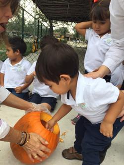 Harvest Celebration 2015