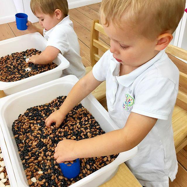 Sensory Play ~ Activities ~ Explore ~ Learn _ecokidspreschools #sensory #play #education #learning #