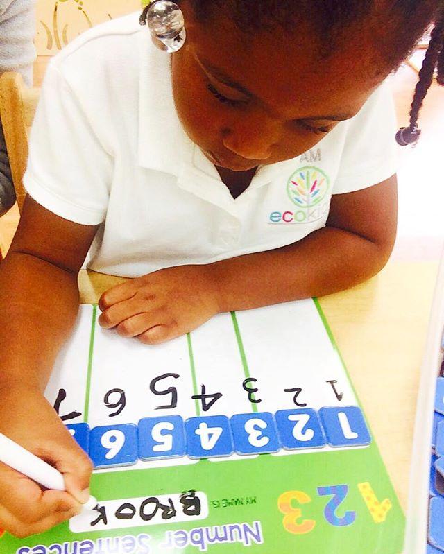 Numbers🔢~ _ecokidspreschools #tbt #activities #freechoice #learning #braindevelopment #numbers #let